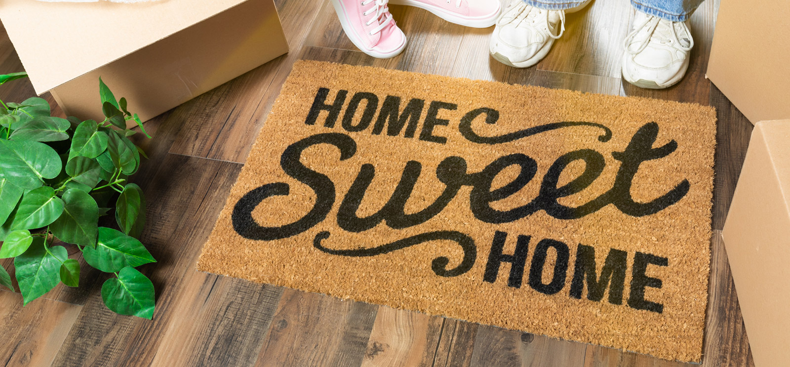 Home Sweet Home welcome mat, moving boxes, plant